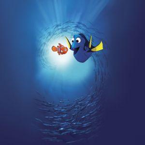 Halat medical Disney Dory and Nemo
